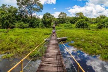 Mittlerer Westen Brasiliens: Pantanal