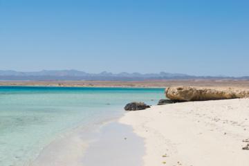 Blick auf die Küste und dahinterliegende Wüste im Wadi el Gemal Nationalpark