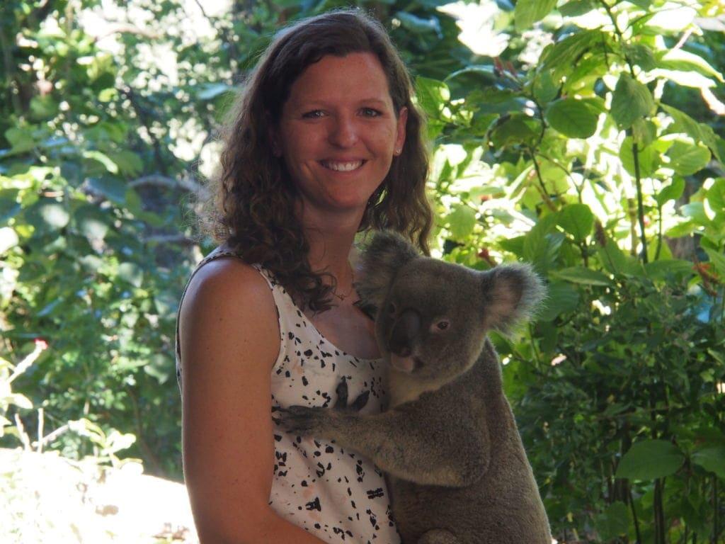 Die Currumbin Wildlife Sanctuary ist ein Zoo zum Anfasen inklusive Koala auf den Arm nehmen, Gold Coast, Australien