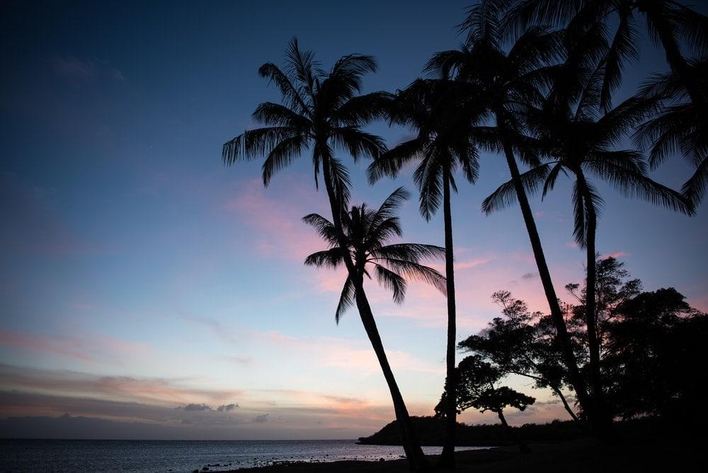 Sonnenuntergang an einem Strand mit Palmen