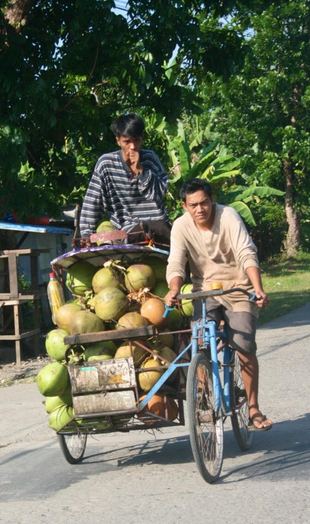 Das Tricycle wird auf den Philippinen für den Transport verwendet, gerne auch mal für Kokosnüsse.