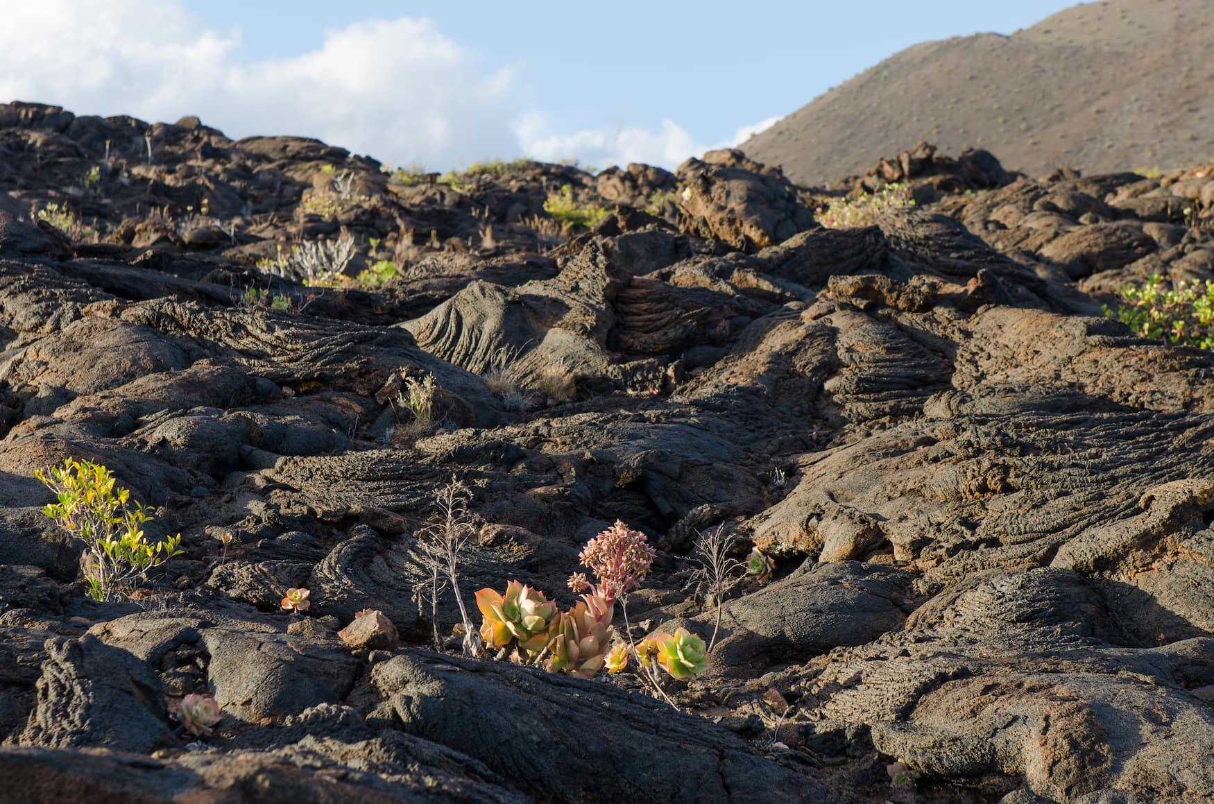 El Hierro, Lavafelder, Vulkan, Insel