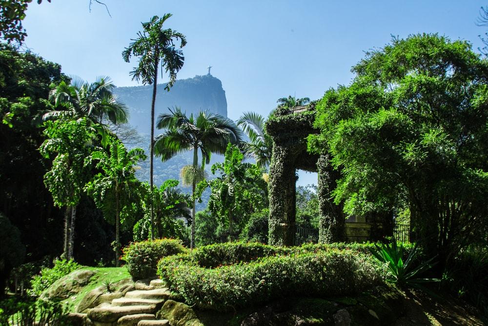 Jardim Botanico in Rio de Janeiro
