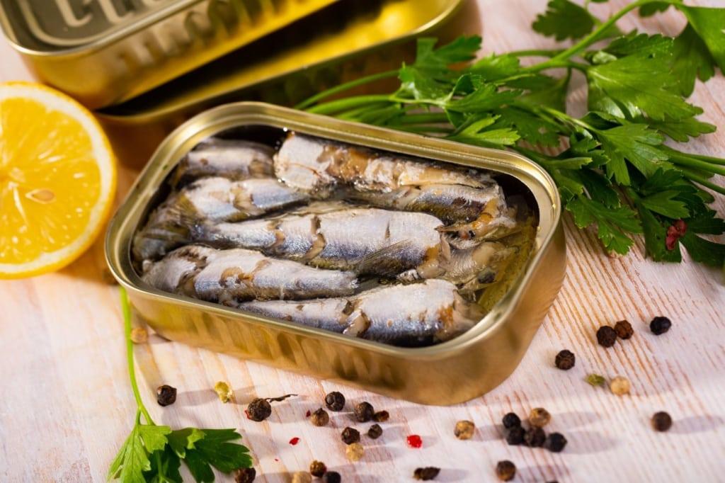 Sardinen in einer Dose eingelegt