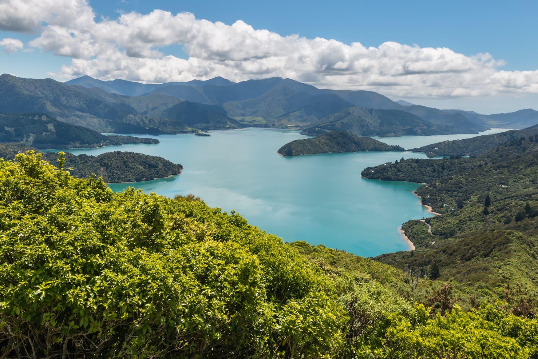 Aussicht auf Neuseeland's Küste und den Queen Charlotte Sound