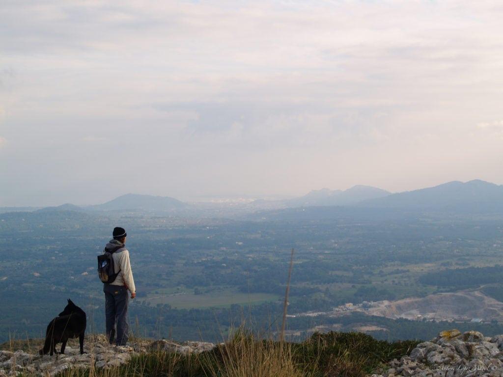 Wandern auf Mallora: Mann in Begleitung eines Hundes blickt von einem Plateau auf die Landschaft