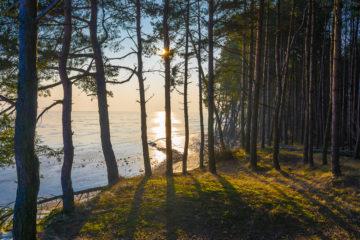 Blick auf die Kurische Nehrung in Litauen