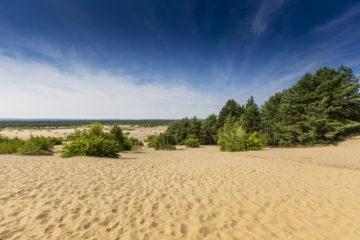 Blick auf die Bledow-Wüste in Polen