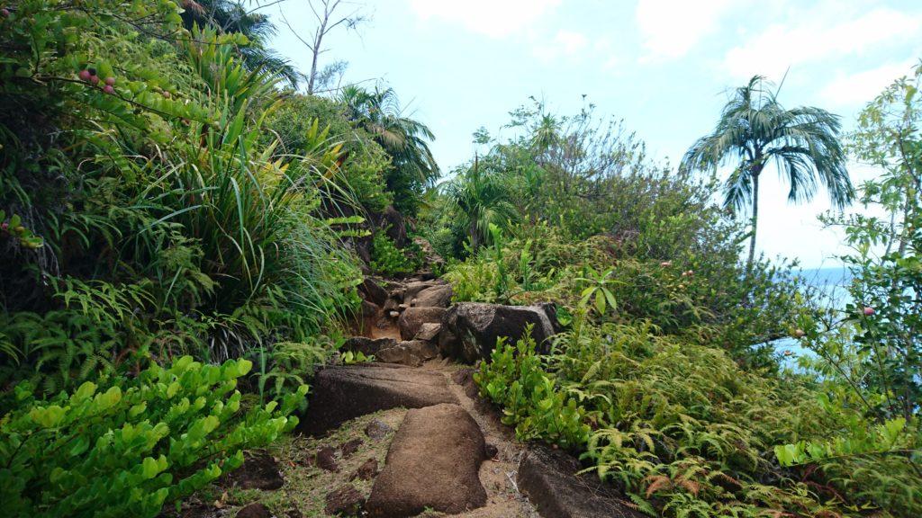 Die Seychellen sind vor allem eins: Natur pur