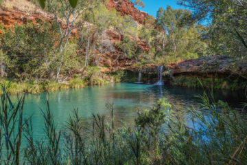Felsenpool in Westaustralien: Fern Pool