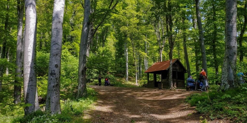 Wanderweg im Medvednica-Park in Kroatien