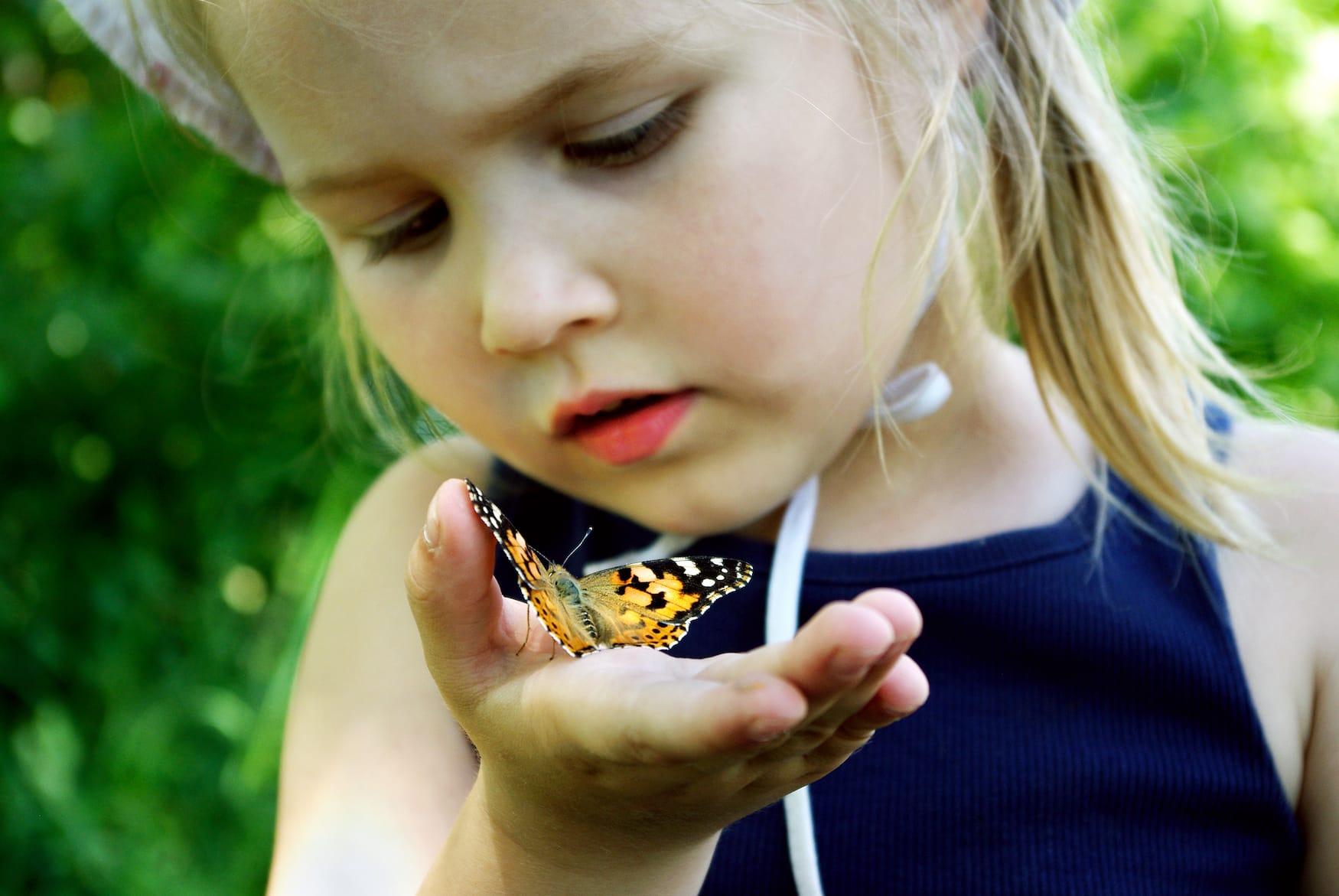 Schmetterlinge sitzt auf Hand eines Mädchens