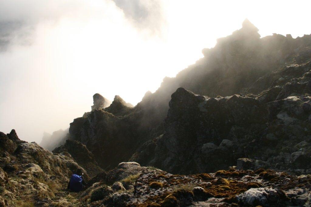 Wolken kriechen den Berghang des Mount Hikurangi in Neuseeland hinauf.