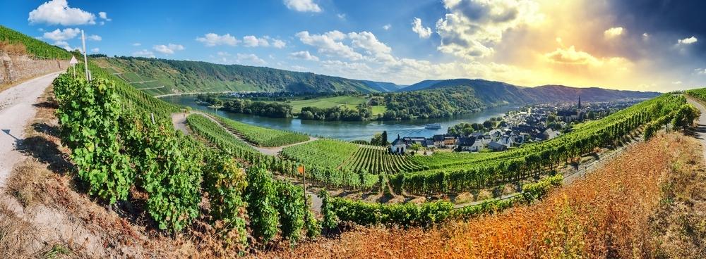 Es muss nicht immer der Rhein sein, die Mittelmosel ist viel beschaulicher