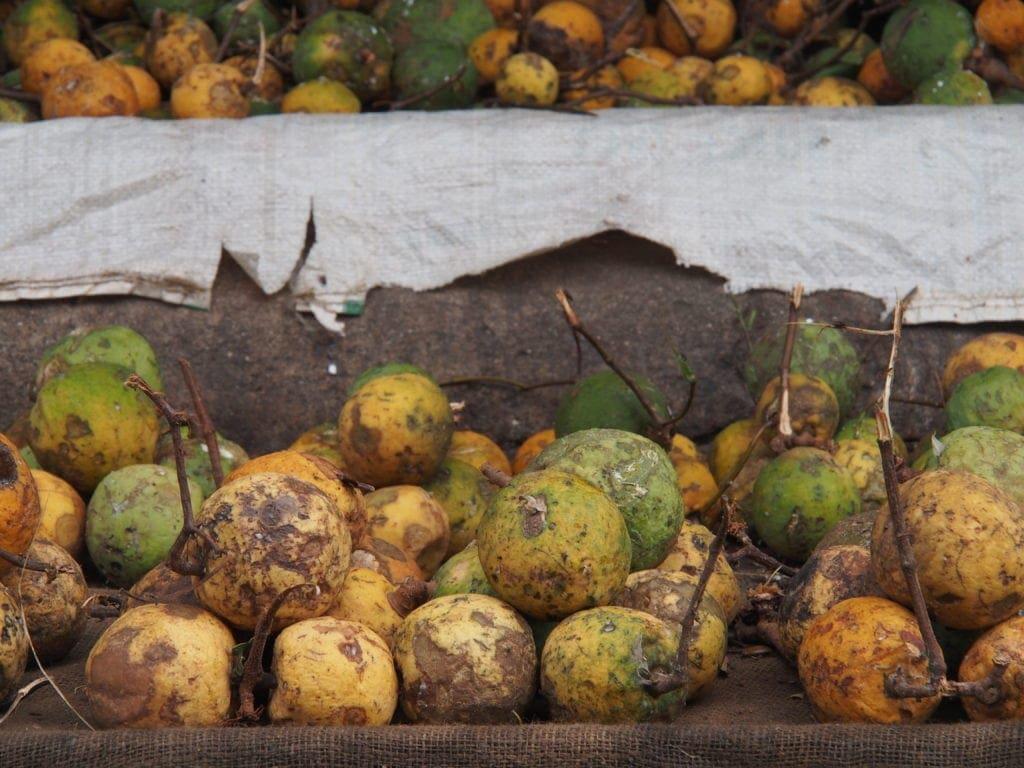 Frisches-Obst-auf-dem-Markt-Sansibar