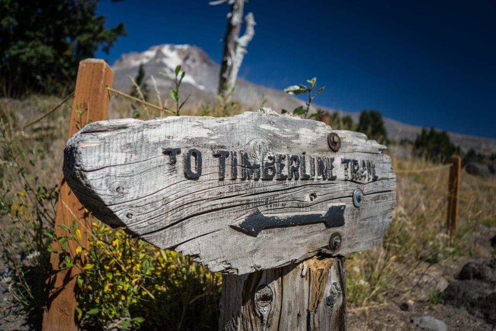 Die Timberland Lodge ist ein idealer Ausgangspunkt für Wanderungen