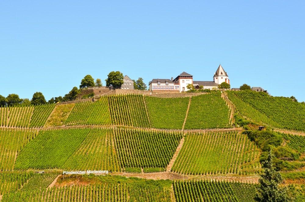 Wunderschöne Marieburg an der Mittelmosel umgeben von Weinbergen