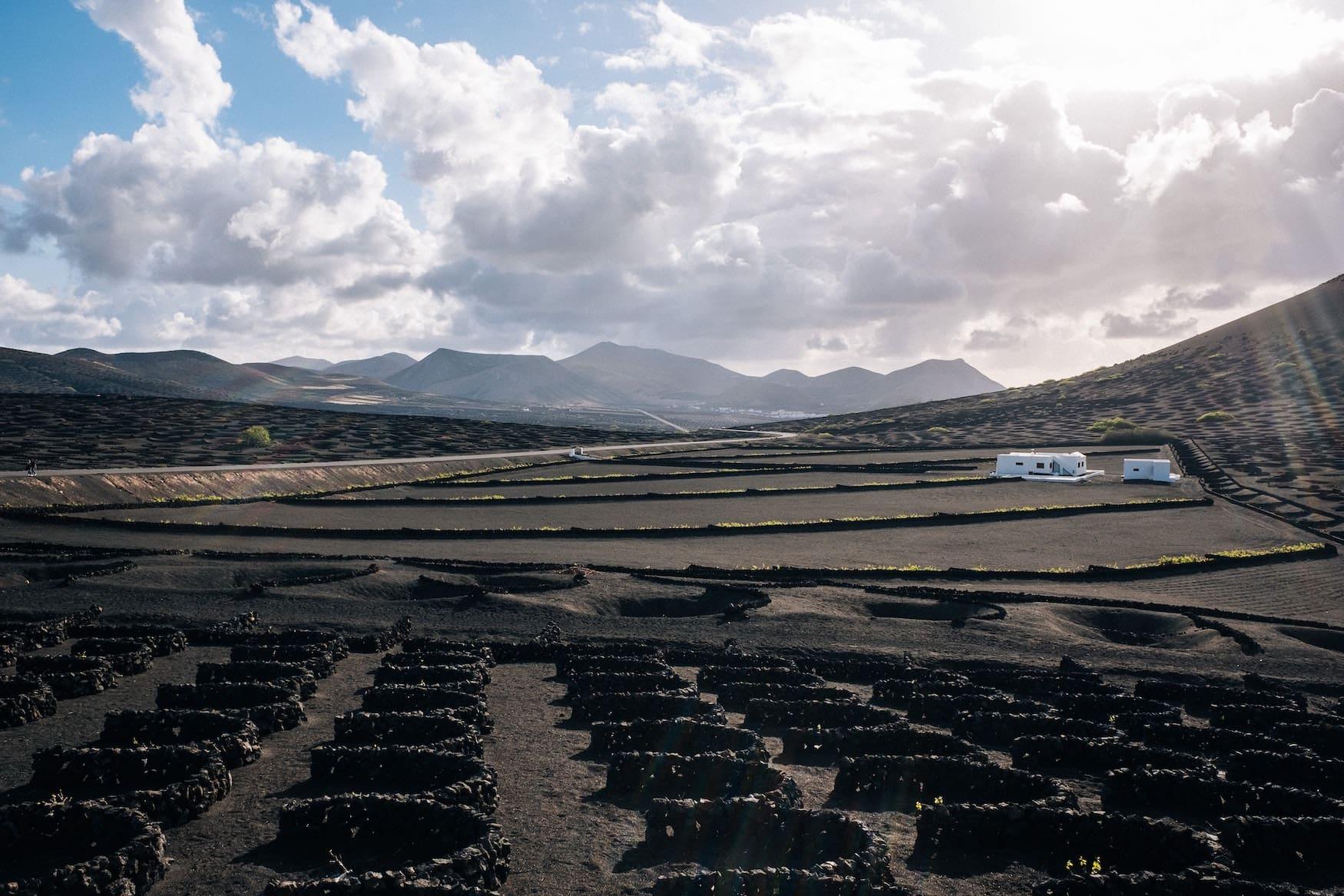 Zu unseren Lanzarote-Tipps zählt auf jeden fall ein Besuch des Weinanbaugebiets La Geria