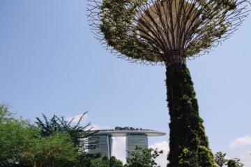Das Wahrzeichen der Stadt: das Marina Bay Sands Hotel