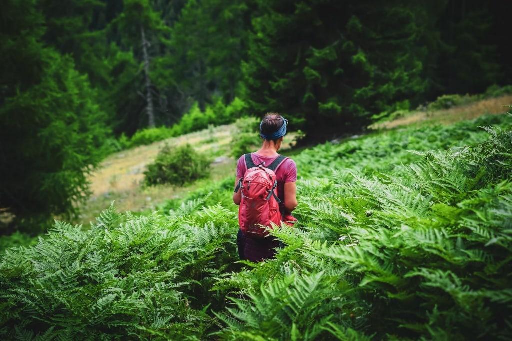 Wir zeigen euch die schönsten Wanderrouten im Vinschgau.