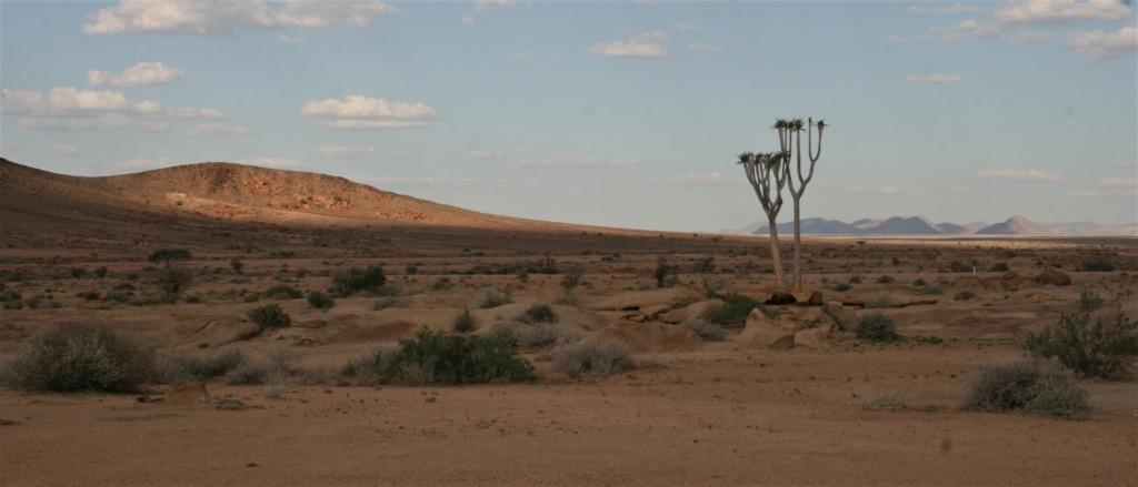 Wer einen Roadtrip durch Namibia plant, der muss sich Auflage Fahrten einstellen - aber die Landschaft entbehrt!