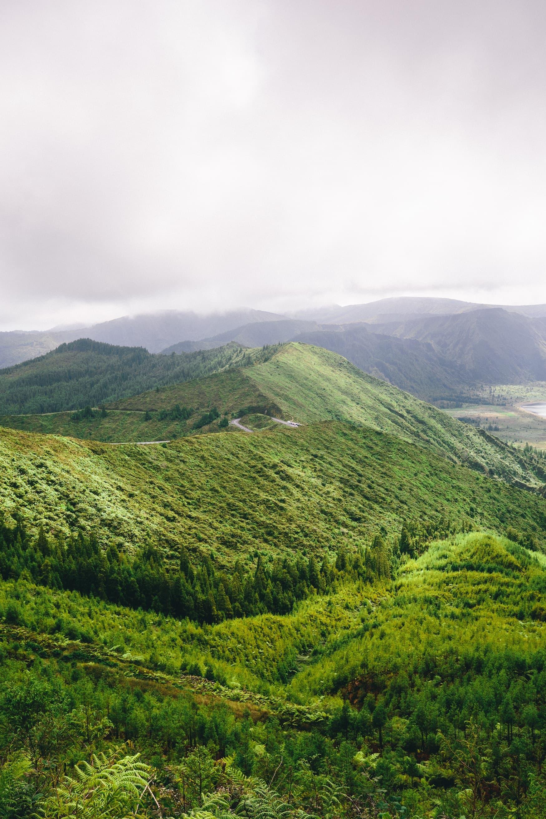 Grüne Bergfelder auf den Azoren, Portugal