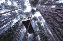 Wir stellen unsere Lieblings-Baumhaushotels vor.