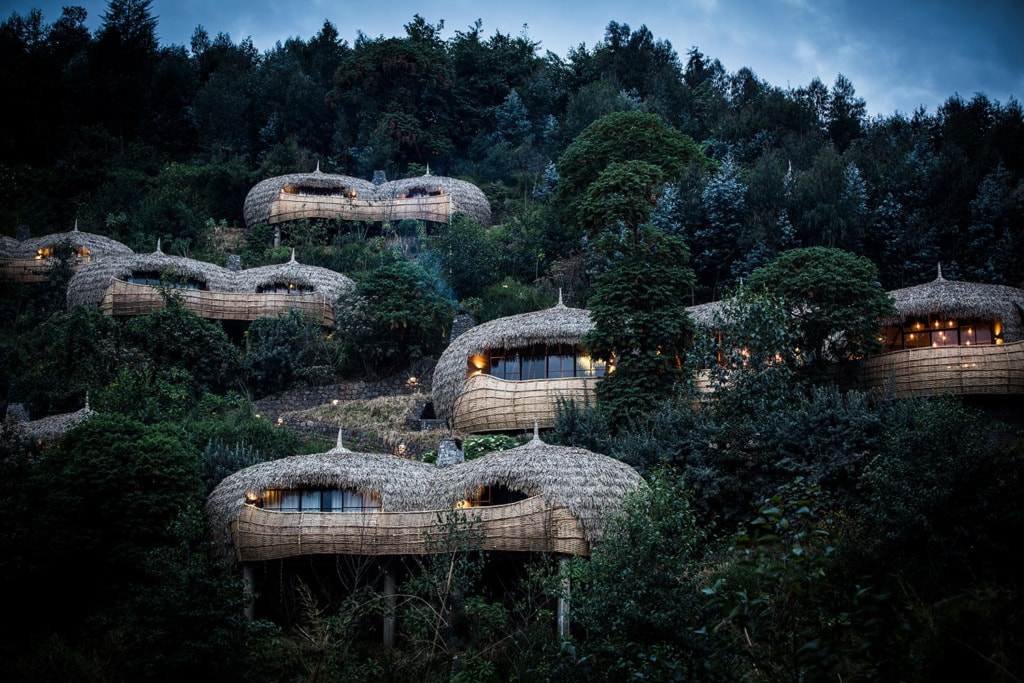 Die Bisate Lodge von Wilderness Safaris in Ruanda ist der absolute Baumhaus-Hoteltraum.