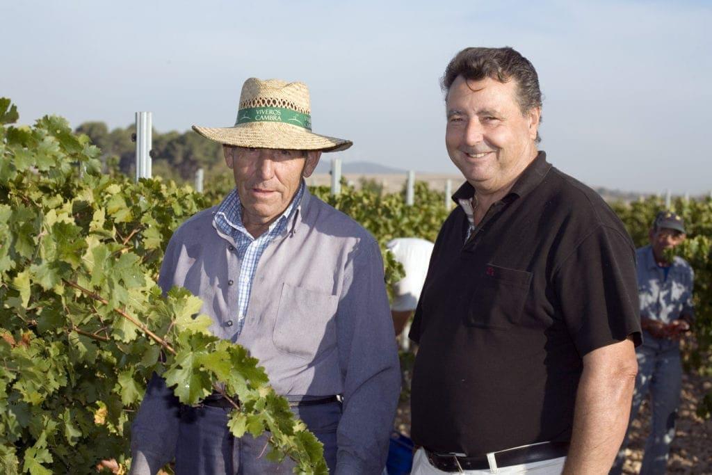 Weinregionen in Europa: El Angosto, Valencia