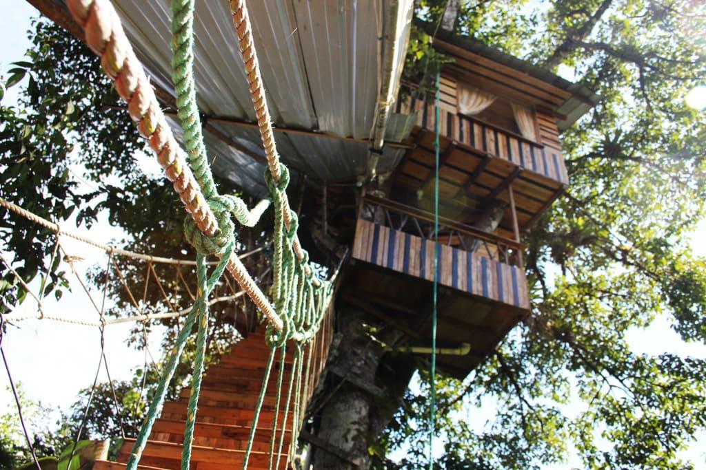 Das El Eden Treehouse Baumhaus Hotel in Ecuador ist ein Paradies für Naturburschen und Abenteurer.