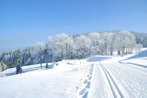Langlaufstrecke bei Bodenmais im Bayerischen Wald