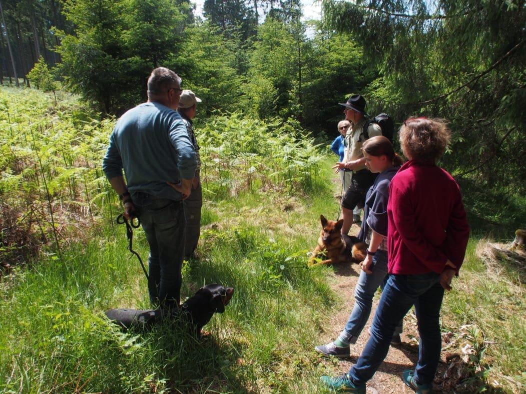 Besucher mit Ranger im Nationalpark Hunsrück-Hochwald