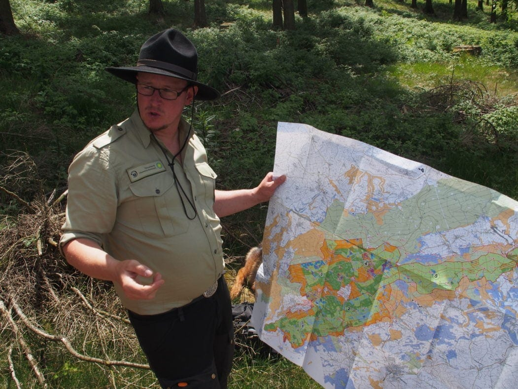 Urlaub im Hunsrück: Ranger Stefan Roth im Nationalpark Hunsrück-Hochwald