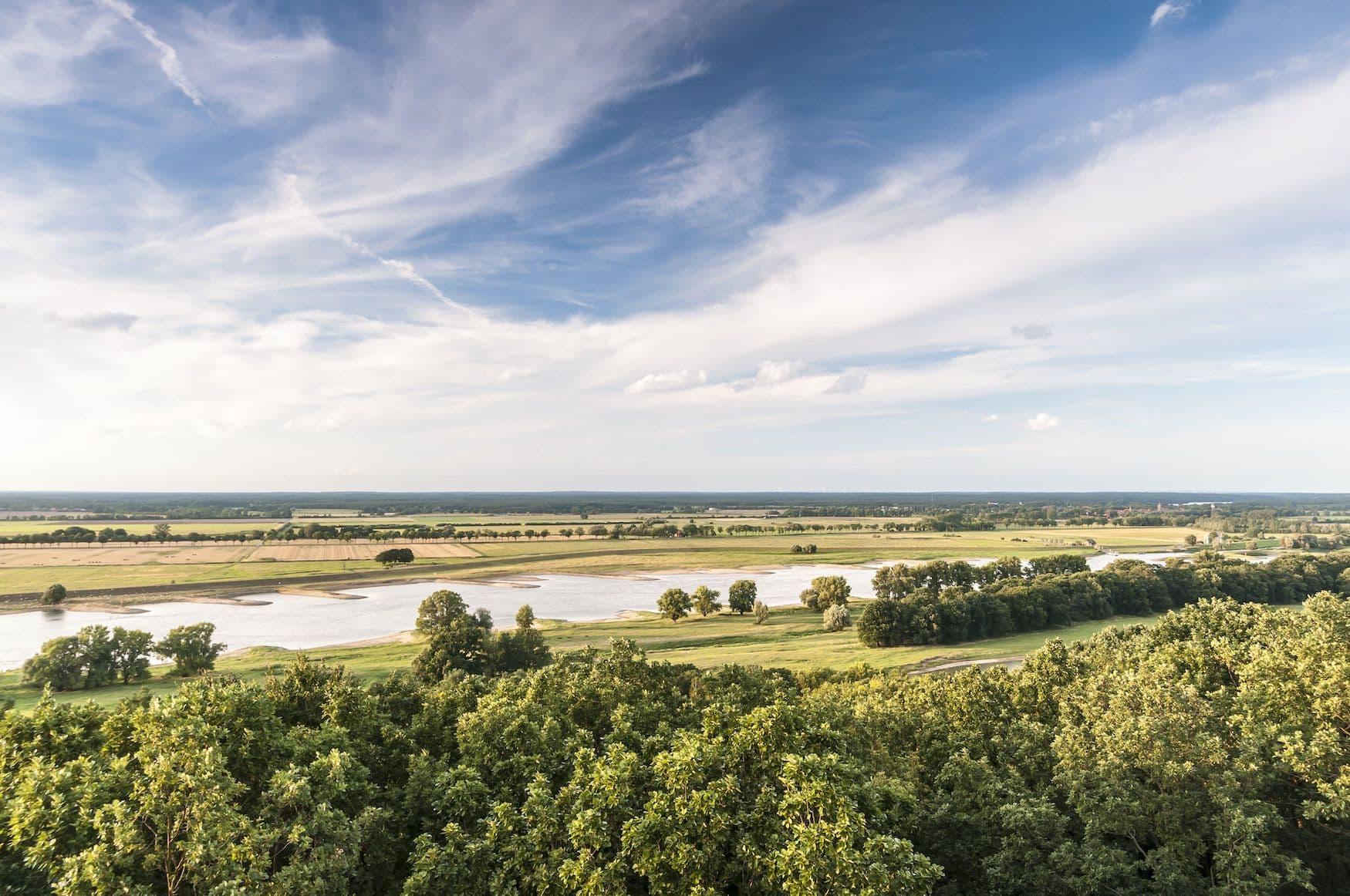 Die Elbe bei Lenzen in der Prignitz