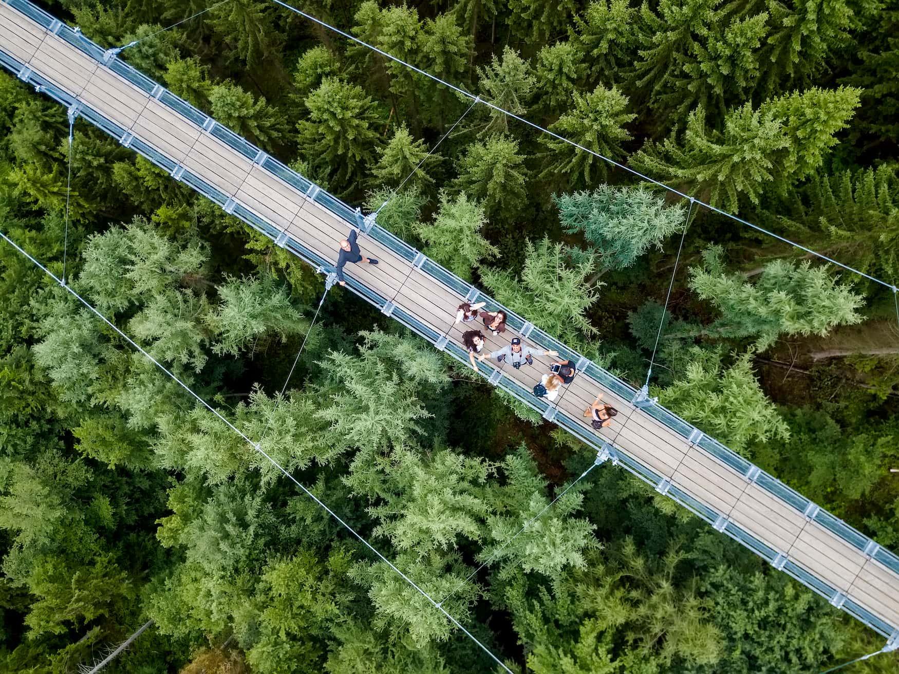 Menschen auf der Hängebrücke Geierlay im Hunsrück