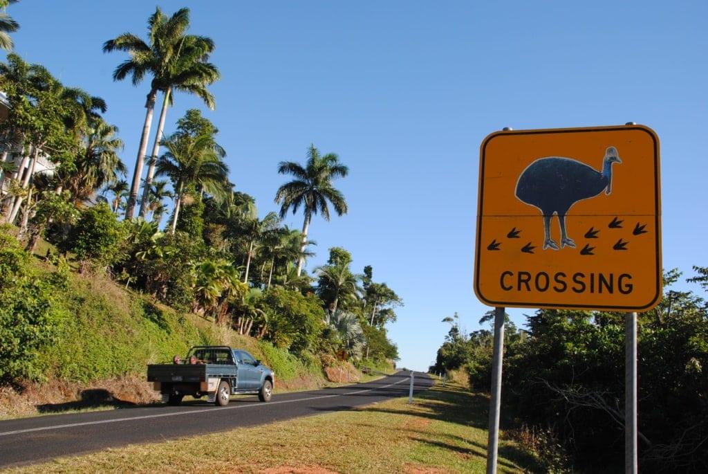 Tipps für Selbstfahrer in Queensland