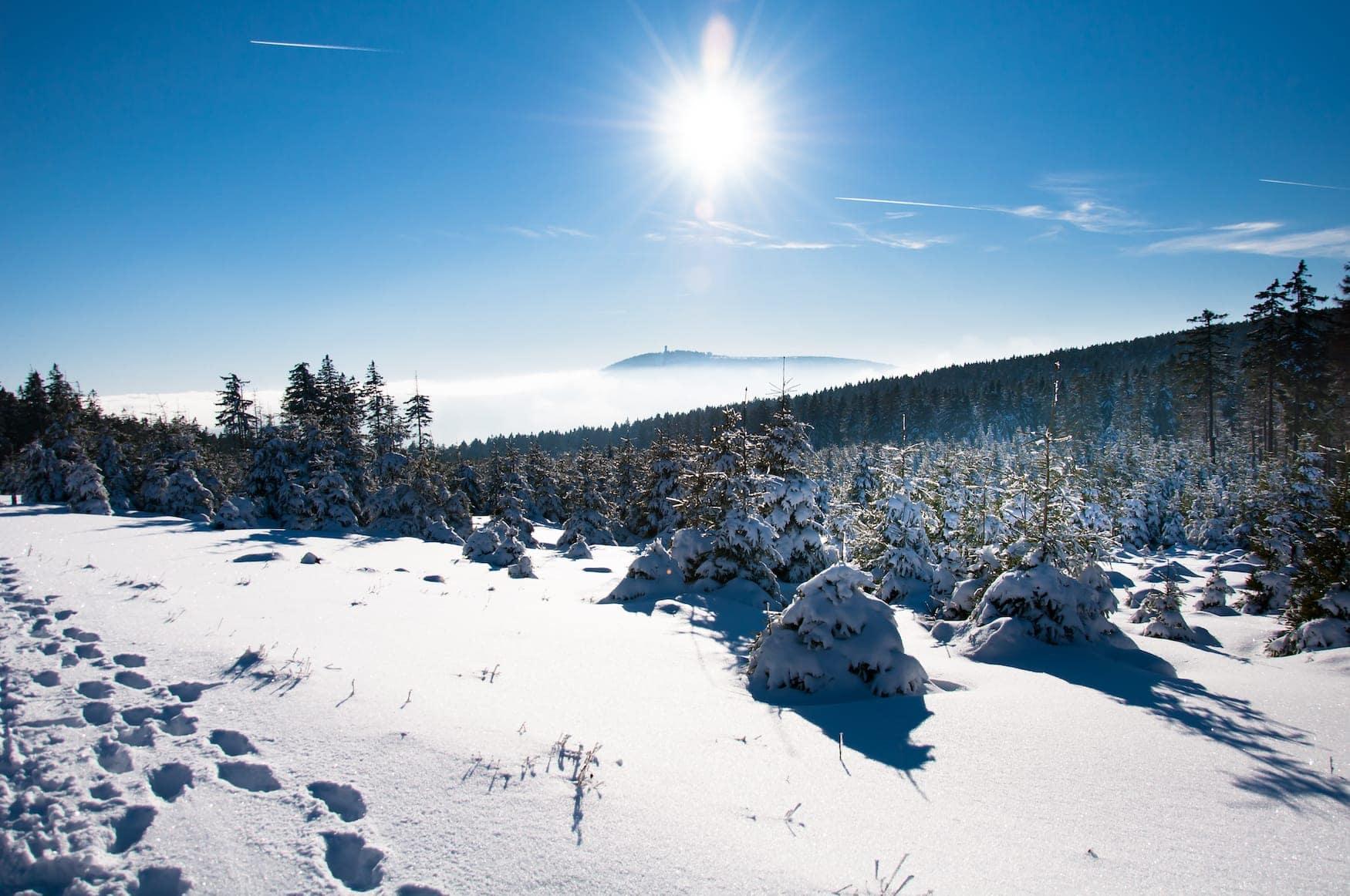 Sonne scheint über verschneiten Gipfeln im Harz, Deutschland