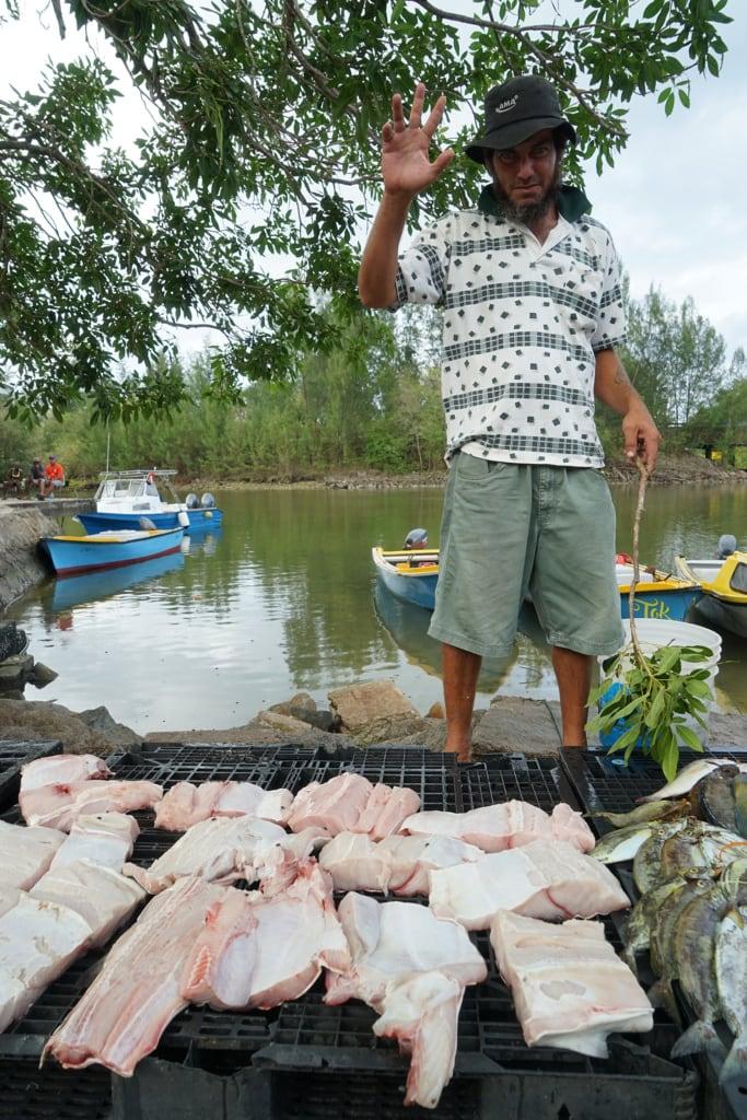 Hammerhai-Verkäufer auf den Seychellen