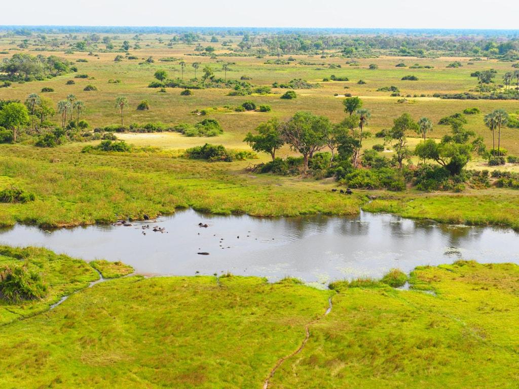 Botswana von oben