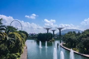 Blick auf Singapur: Gardens by the bay