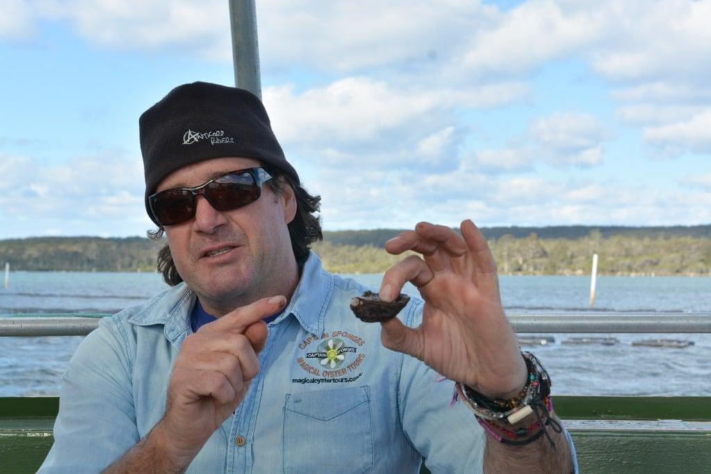aptain Sponge und die Sydney Rock Oyster