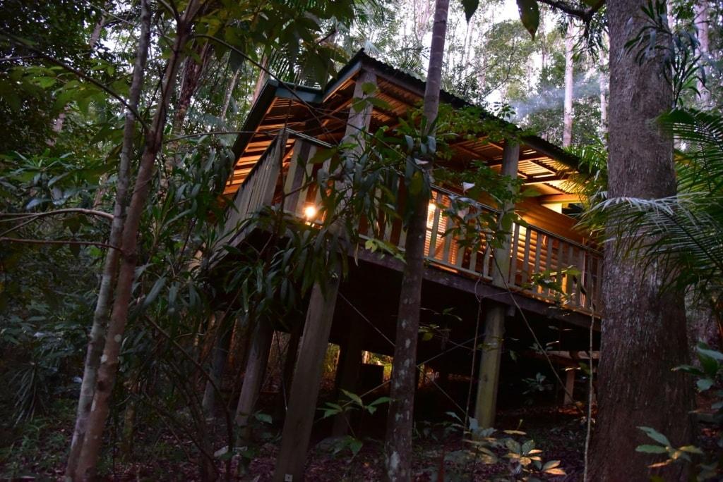 Narrows Escape Rainforest Retreat - Queensland