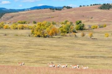 Landschaft South Dakota