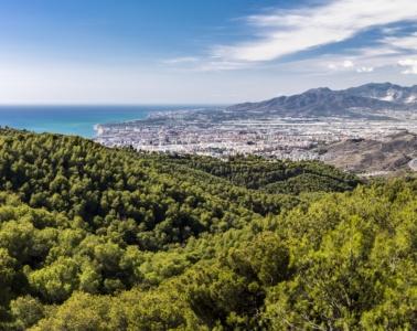 Panoramablick über Malaga mit Wald und Meer