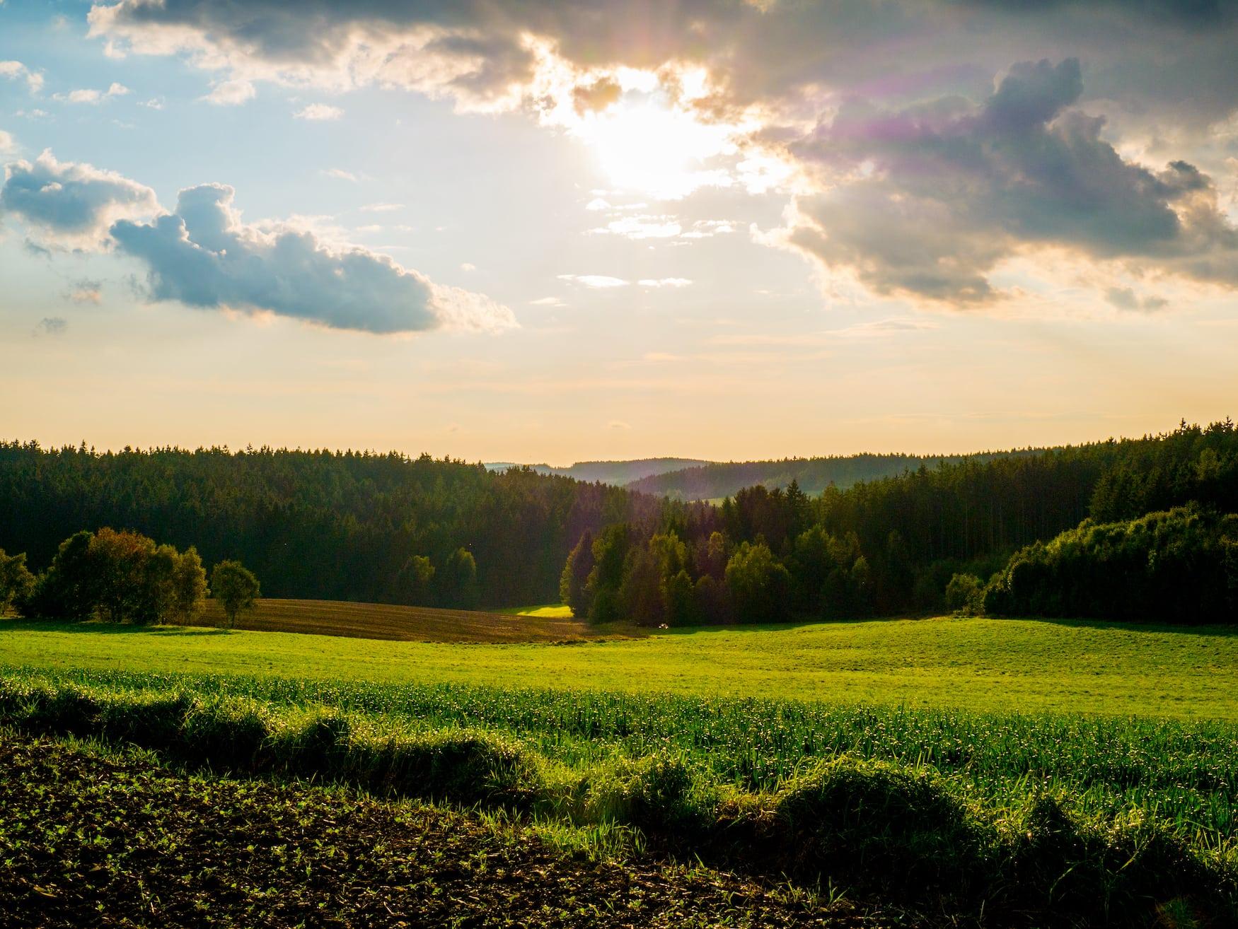 Landschaft im Frankenwald