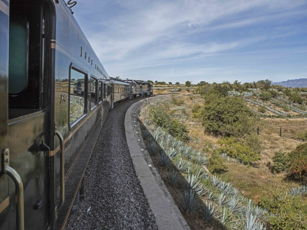 Cuervo Express