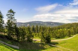 Blick auf den Brocken im Harz