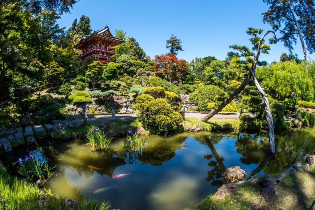 Japanischer Garten im Golden State Park in San Francisco