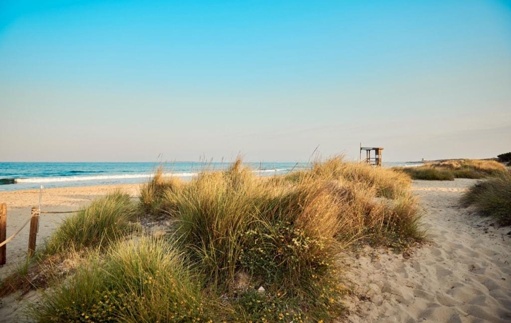 Strand Es Cavallet auf Ibiza