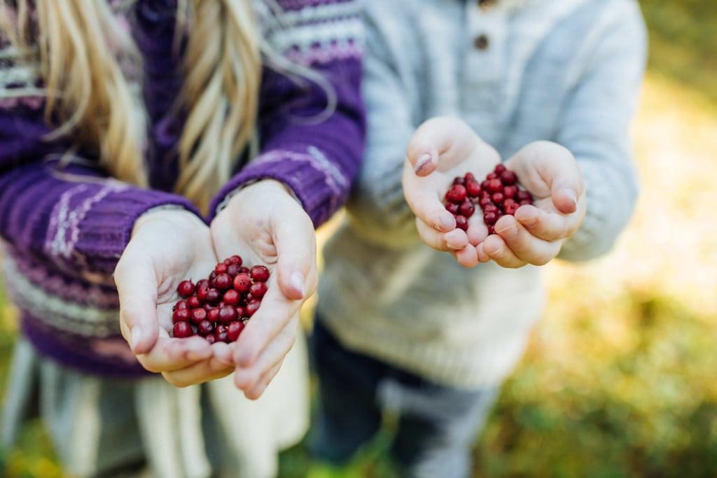 Beeren in Kinderhänden
